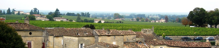 vineyard view from St. Emilion