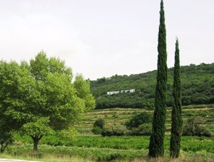 Vacqueyras Appellation