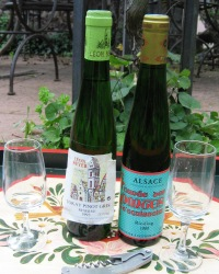 French Wine Tours In Alsace
