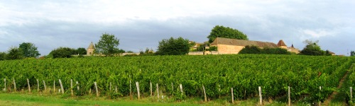 French Wine Tour Holidays In MACONNAIS