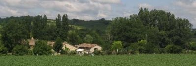 Wine Tours In France - Duras