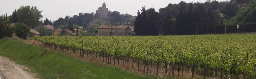 Wine Tours In France Rhone Region