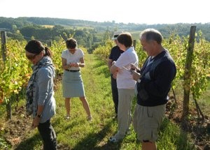 Wine Tours In France Bergerac